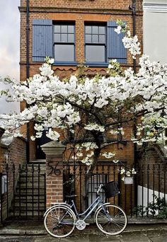 it doens't get much more charming than this - love spring and trees in bloom