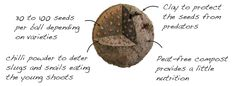 How it Works - Seedball Wildflower Seeds, Growing Seeds, Garden Gifts, Garden Beds, Simple Way, Planting Flowers, Wild Flowers, Action, Group Action