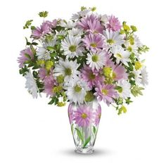 "Telefloras Sweet Blossoms Bouquet - Lavender and white daisy spray chrysanthemums are accented with assorted greenery. Delivered in a ""blossoms"" vase with a lavender daisy pattern. Beautiful Flower Arrangements, Elegant Flowers, Floral Arrangements, Beautiful Flowers, Beautiful Things, Sweet Blossom, Sympathy Flowers, Same Day Flower Delivery, Mothers Day Flowers"