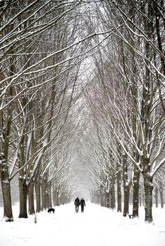 Winter ( Netherlands)