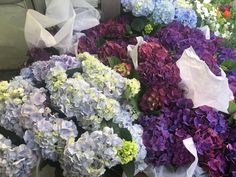 """Another visit to my happy place aka """"NY Flower market"""" and a winner! - Enchanted BlogEnchanted Blog"""