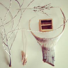 "@Paper Runway where passion meets paper's photo: ""Taking part in #7vignettes challenge. Today is nature. Fun @jenbishop_interiorsaddict @Kara Rosenlund #nature #7vignettes"""