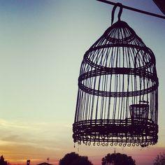 Mi casa...la hora mágica no sólo está en la costa #home #jaula #carrier #horamagica #sunset #sunshine Costa, Ceiling Lights, In This Moment, Photo And Video, Lighting, Pendant, Instagram, Decor, Decoration