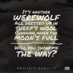 Owl City - Wolf Bite