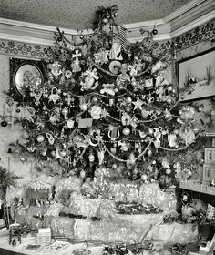 this Christmas tree truly takes my breath away.... c.1927