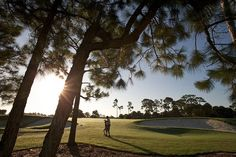 Golfing Opportunities at PGA in Port St. Lucie 34986