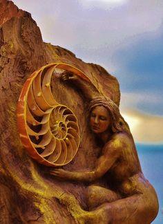 Driftwood Art by Debra Bernier <3