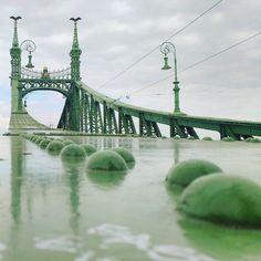 Liberty Bridge in Budapest, Hungary Liberty Bridge, Might Have, Budapest Hungary, Tower Bridge, Great Photos, City, Green, Travel, Beautiful