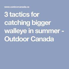 3 tactics for catching bigger walleye in summer - Outdoor Canada