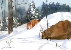 "Red Fox in the Snow - Now offered as a Single Edition"" - Digital Watercolour and Ink, in Snowy Landscapes Watercolor And Ink, Watercolor Paintings, Watercolors, Snow Now, Fruit Painting, Go Red, Custom Canvas, Winter Art, Red Fox"