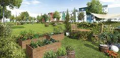 Andere Objekte haben einen begrünten Hinterhof, aber... das Grünauer Grün hat keinen Hinterhof und es sollte auch nie einer sein. Hier klicken für mehr Infos zum Wohn-Projekt: http://www.gruenauergruen.com