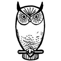 So Cool How To Draw An Owl