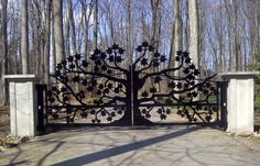 10 Intricate Metal Garden Gates Ideas For Your Outdoor Spaces Metal Garden Gates, Metal Gates, Wooden Gates, Wrought Iron Gates, Driveway Gate, Fence Gate, Fences, Driveway Design, Front Gates