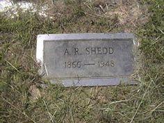 """Alfred Rhett Ritt Shedd Birth: Mar. 31, 1865 South Carolina, USA Death: Nov. 24, 1948 Carbon Hill Walker County Alabama, USA  """"Ritt"""" maried Henyetta STACKS on Jan 14 1890 in Townley, Walker Co., AL. They had two children Cora S. & Linnie B. Walker Co., AL census gives DOB Mar 1865 SC    Family links:   Spouse:   Henrietta Stacks Shedd (1856 - 1916)*    Children:   Linnie B. Shedd Patterson (1893 - 1974)*   *Calculated relationship   Burial: Guthrie Cemetery  Townley Walker County Alabama…"""