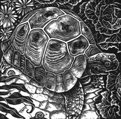 Topsy Tortoise ~ Wood Engraving ~ Rosamund Fowler