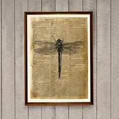 Insect print Wildlife decor Dragonfly poster by wordantique