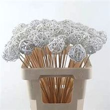 Grassball Picks - white - there are tonnes of Picks in this month in varieties of colours and sizes - just take a look at our website for further ideas and inspiration to create your Christmas Extravaganza!