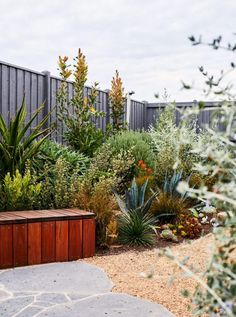 A small garden big on heart - Native Plant Project Australian Garden Design, Australian Native Garden, Rusty Garden, Dry Garden, Coastal Gardens, Small Gardens, Seaside Garden, Architectural Plants, Gardens