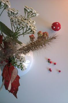 Frau Frieda: Von Füchsen, Fliegenpilzen und einer Mietzekatze