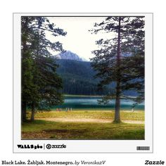 Black Lake. Žabljak. Montenegro. Wall Decal artwork, photo, photography, decor, design, montenegro, crno jezero, landscape, lake, black lake, scenery, nature, travel, žabljak, tourism, durmitor, mountain, freshness, coolness, day, sunny, forest, pine tree, pine, coniferous, tree, tranquility, blue, green,  gift, sale, buy, wall art