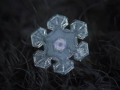 These Macro Photos Of Snowflakes Are Totally Breathtaking. With his stunning close-up photos of snow in Moscow, Russia, Alexey Kljatov proves nature is the world's most spectacular artist. Fotografia Macro, Snowflake Photography, Snow Photography, Amazing Photography, How To Make Camera, Snowflake Images, Ephemeral Art, Close Up Photos, Belle Photo