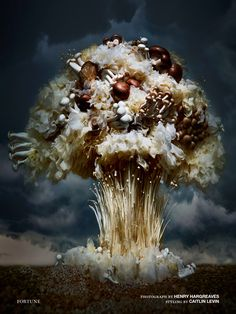 A nuclear explosion at cellular level!