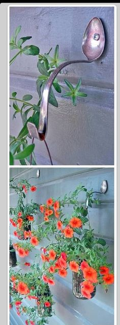 Spoon hooks for hanging baskets