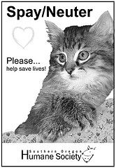 Spay/Neuter is the message always  www.sohumane.org