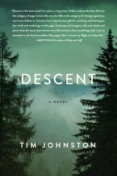 Descent by Tim Johnston: At what point does a family stop searching? At what point does a girl stop fighting for her life? #austinpubliclibrary #readersadvisory