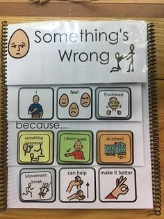 AAC Script: Something's Wrong Problem-Solving Book-aac, behavior