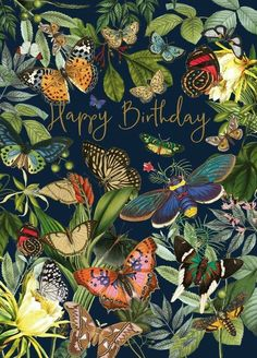 Happy Birthday Flowers Wishes, Happy Birthday Wishes For A Friend, Beautiful Birthday Cards, Happy Birthday Pictures, Happy Birthday Sister, Happy Birthday Messages, Happy Birthday Quotes, Happy Birthday Greetings, Card Birthday