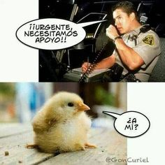 No puedo parar de reír!!! xD