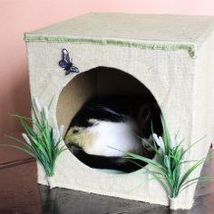 A areia do banheiro do gato é uma das coisas que deixa os humanos mais descontentes – e, acredite, os gatos também. Muitas areias têm poeira e fragrâncias que podem causar problemas respiratórios s…