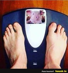 not even joking Loose Weight Without Exercise, Ways To Loose Weight, Offensive Memes, Fat Burning, Haha, Funny Pictures, Good Things, Stupid Things, Funny Things