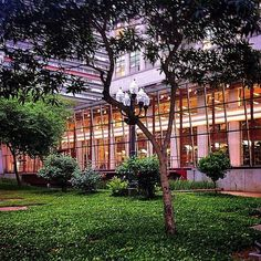 Biblioteca Mario de Andrade - São Paulo