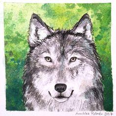 The Wolf, day 46 woods of #the100daysofwoodlandwonders . #the100dayproject #thehundreddayproject #inkandwatercolors #forest #forests #woodland #woodlanillustration #woodlandart #illustrationoftheday #iamcreative #artsagram #illustration #kuvitus #drawing #watercolors #schminckewatercolor #the100dayproject #susi #wolf #wolfart #wolfillustration #wolfdrawing