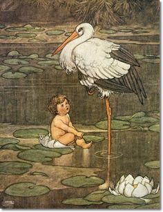 """The Bud Opened into Full-Blown Flower in the Middle of Which Lay a Beautiful Child"" illustration by William Heath Robinson (British, for ""The Marsh King's Daughter"" from a 1913 edition of Hans Christian Andersen's Fairy Tales. Walter Crane, Edmund Dulac, Ex Libris, Johannes Itten, Vintage Baby Boys, Vintage Boy Names, Vintage Art, Heath Robinson, Andersen's Fairy Tales"