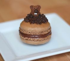 Project Denneler - Happy Brownhog Day macarons