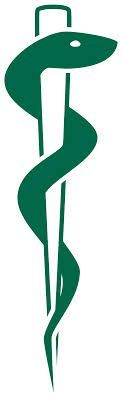 rod of asclepius tattoo - Google Search