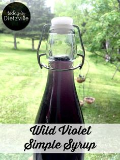 Learn how to make a wild violet simple syrup to pour over pancakes or waffles, add to sparkling water, or use in cocktails!
