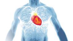 Duas novidades dão maior rigor à prevenção de doenças cardíacas: a taxa do LDL tem que ser ainda menor para pacientes de risco e a perda de peso é obrigatória para todos. Não existe obesidade saudável
