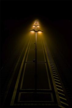 """Platform"", ©Rainer Burkard"