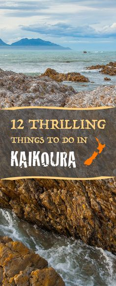 New Zealand has many popular tourist destinations that continue to attract travellers from all over the world, none more charming than the small coastal town of Kaikoura. https://www.newzealandbyroad.com/things-to-do-in-kaikoura/