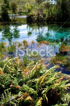 Dancing Sands, Pupu Springs, Golden Bay Royalty Free Stock Photo