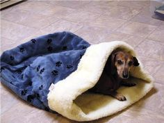 Doodlebug Dud's Sleeping Bag For That Pet That Loves To Burrow - Size small (under 12 pounds) on Etsy, $25.00