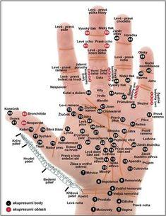 Všechno je to ve vaší dlani: Tiskněte body podle toho, kde vás bolí Acupuncture Points, Acupressure Points, Hand Reflexology, Acupressure Therapy, Dental Health, Natural Treatments, Stress And Anxiety, How To Relieve Stress, Human Body