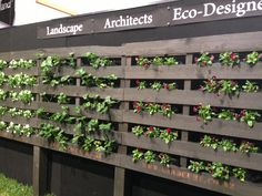 Pallet garden - this is too cool! Look at tehw way to do strawberris-- this is very efficient.