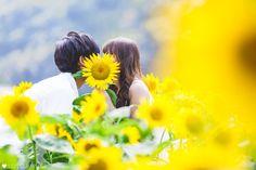 Cold Face, Flowery Wallpaper, Blue Springs, Saya, Masaki, Wedding Photos, Scene, Bridal, Couple Photos