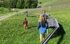 Ausflugstipps in der Steiermark für die ganze Familie. Picnic Blanket, Outdoor Blanket, Places, Road Trip Destinations, Vacation, Viajes, Tips, Nice Asses, Picnic Quilt