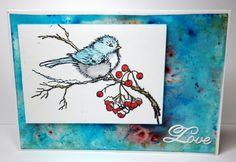 Snow Bird,